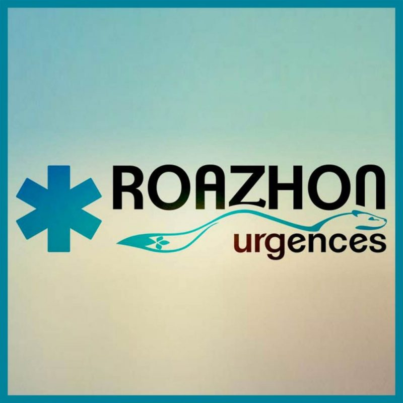 conception de site web, logo
