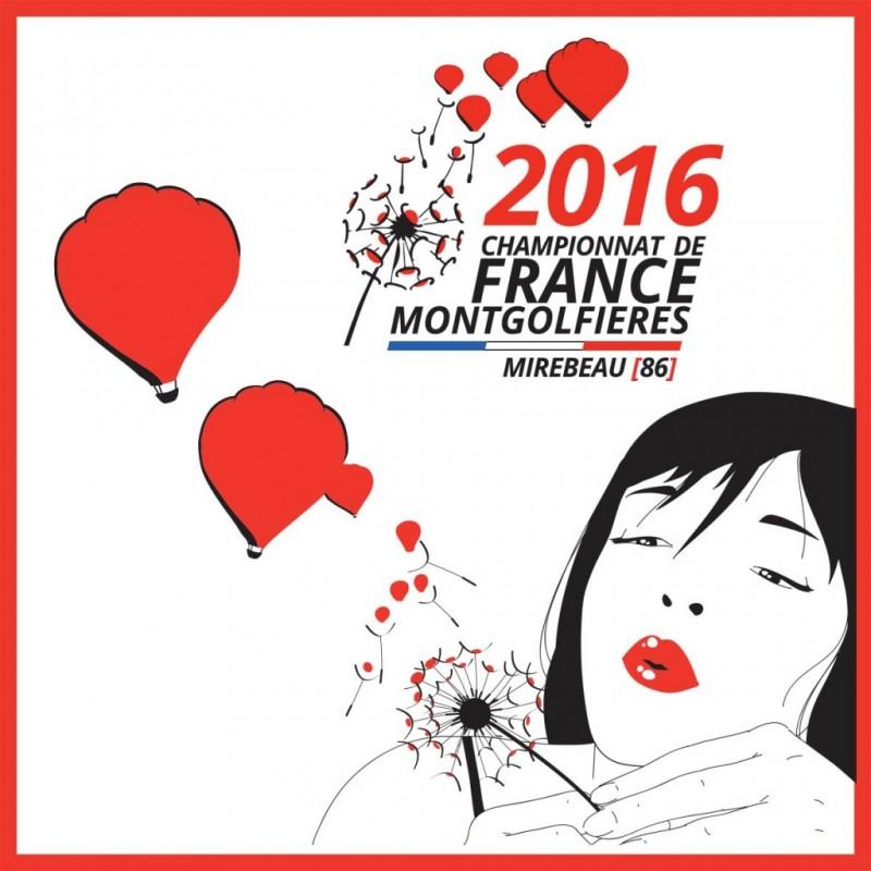 Logo, site web et illustrations pour le Championnat de France de Montgolfières 2016  par l'Agence de Com'